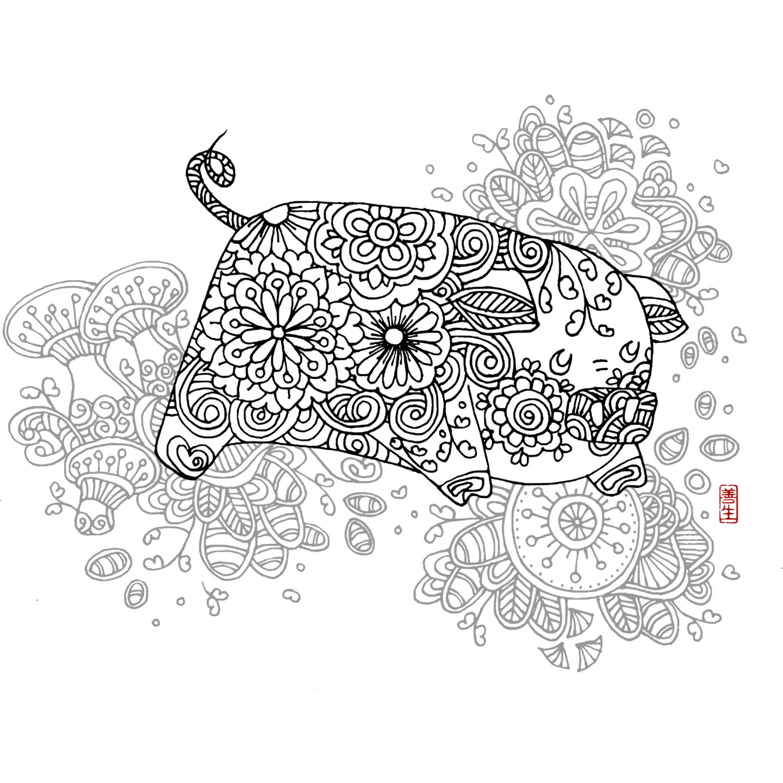 Chinese zodiac : PIG