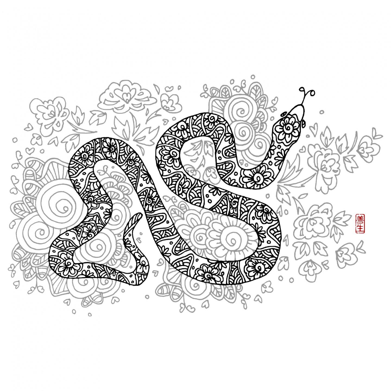 Chinese zodiac : SNAKE