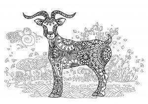 digital: Coloring - Goat