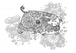 digital: Coloring - Pig