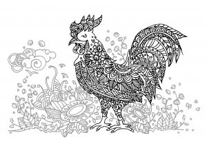 digital: Coloring - Rooster