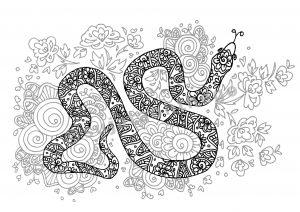 digital: Coloring - Snake